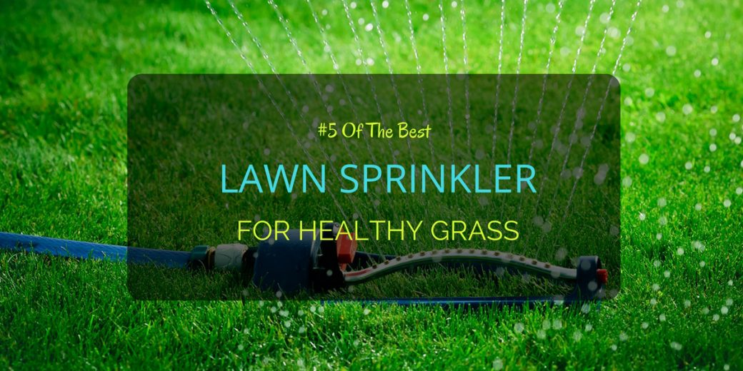 5 Of The Best Lawn Sprinkler For Healthy Grass