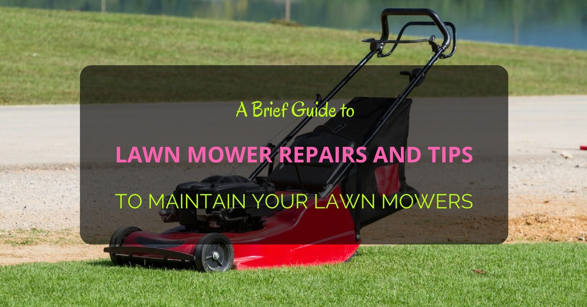 A brief guide to lawn mower repairs and tips to maintain your lawn mowers grow gardener blog - Gardening in october a brief to do list ...
