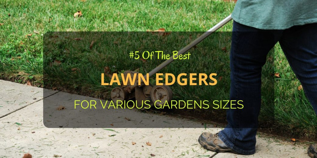 5 Of The Best Lawn Edgers For Various Gardens Sizes
