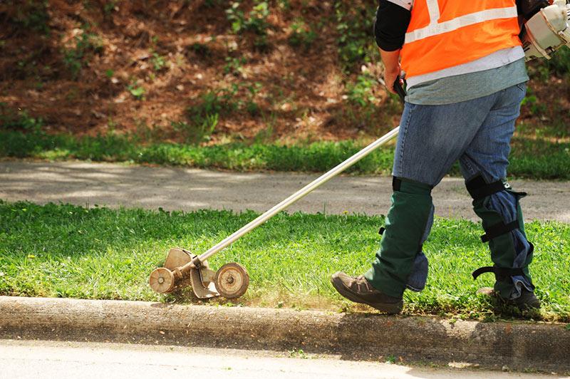 5 of the best lawn edgers for various gardens sizes grow gardener blog rh growgardener com manual rotary lawn edger best manual rotary lawn edger