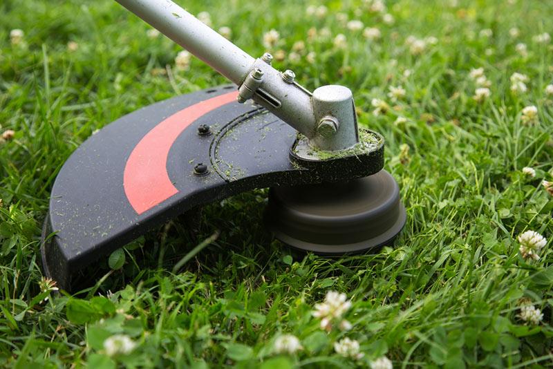 5 of the best lawn edgers for various gardens sizes grow gardener blog