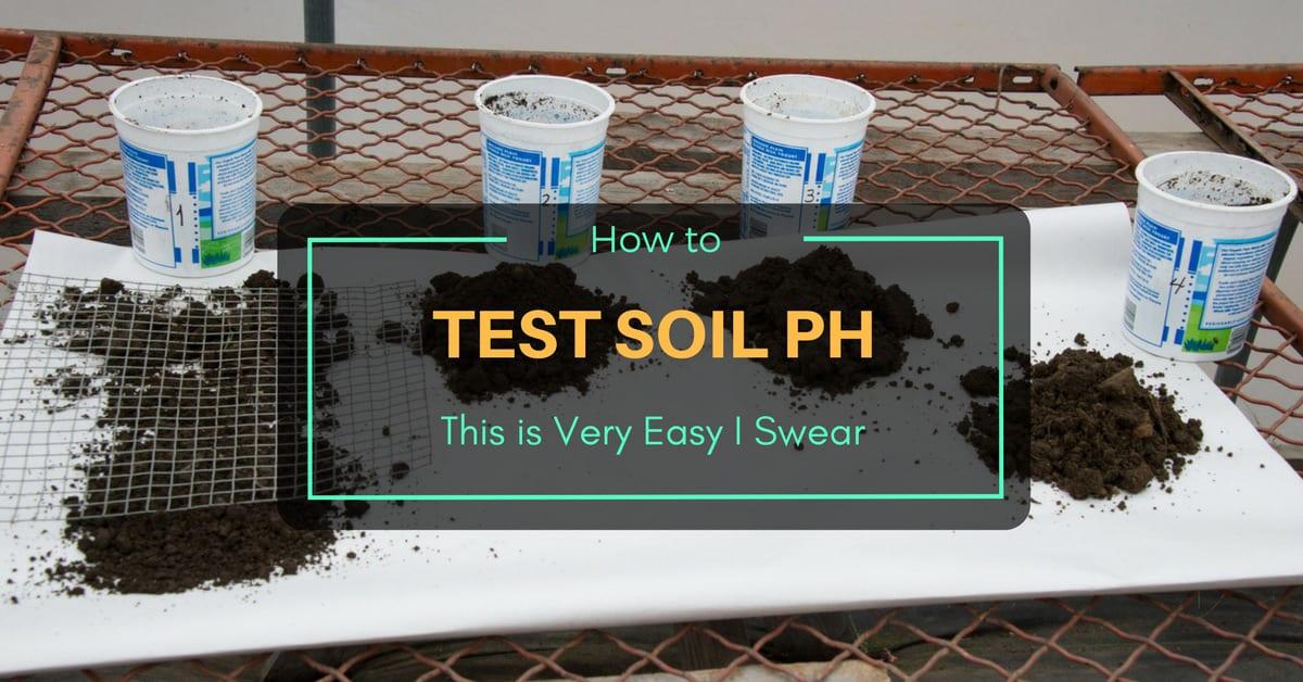 how to make soil more alkaline