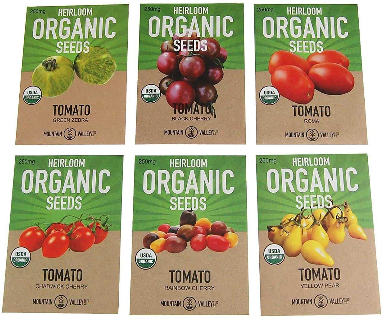 When To Plant Tomatoes: See The 7 Helpful Tips Here
