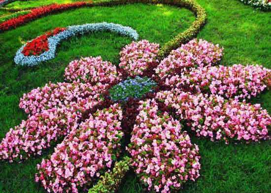Flower shaped Garden Bed