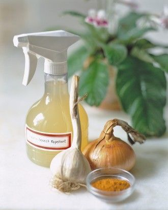 Garlic spray