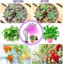 Grow Lights Plant Lights for Indoor Plants Semai 40W 80 LED Lamp Bulbs with 3 9 12H Timer 10 Dimmable 2