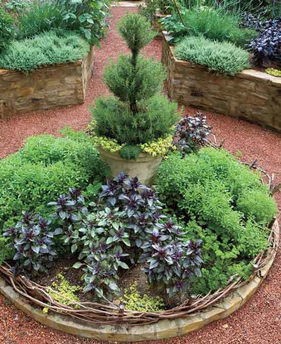 Tiered Raised Beds