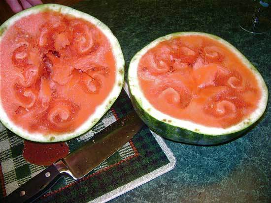 bad watermelon