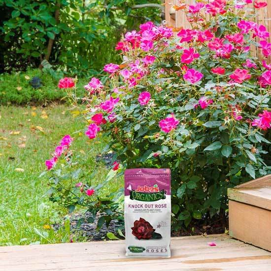 Jobe Organics 9425W Knock Out Rose Organic Fertilizer Brown 2