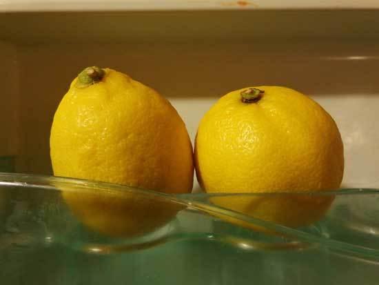 Lemons in Fridge