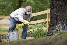 fertilize lawn in spring