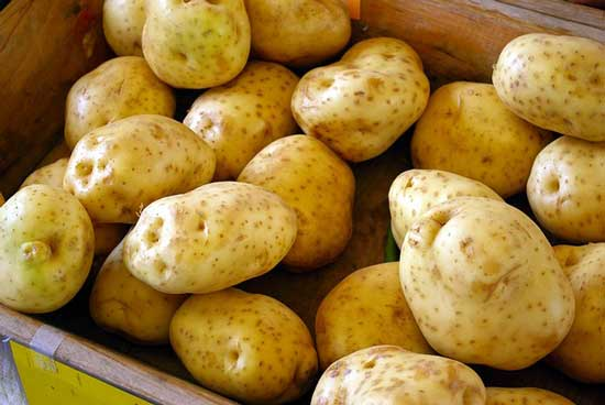 How Long Do Russet Potatoes Last