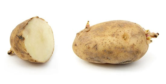 Why Russet Potatoes Going Bad Is A Serious Problem
