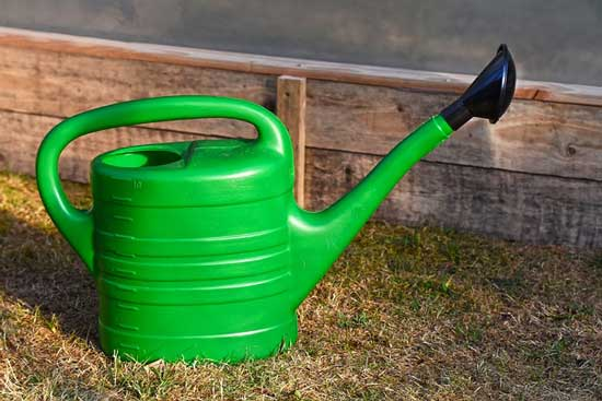 slender spout watering can