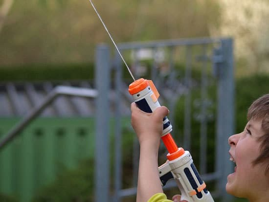 Get Rid of Mockingbirds by Water Gun