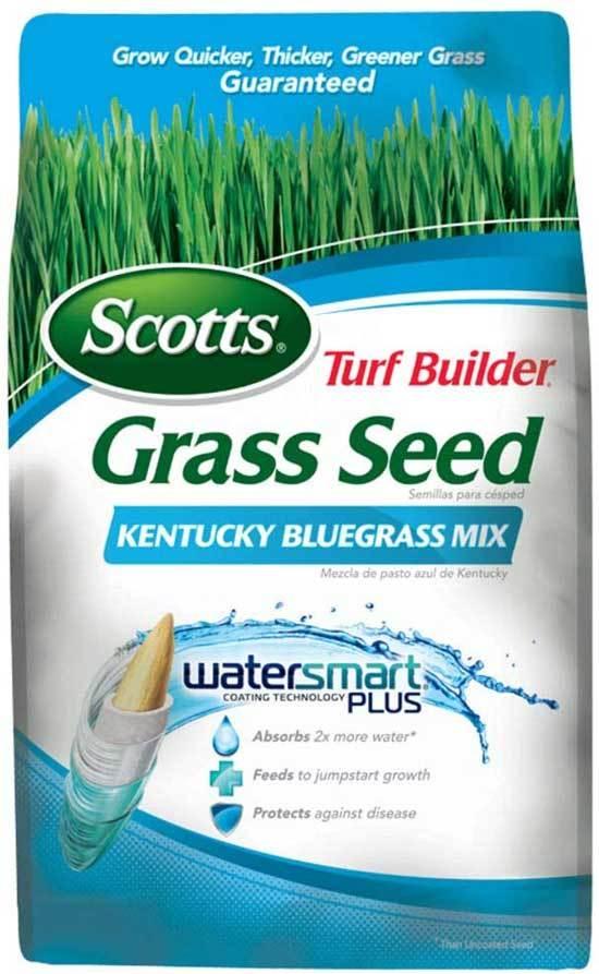 Best Kentucky Bluegrass Seeds Scotts 18269 Turf Builder Grass Seed Kentucky Bluegrass Mix
