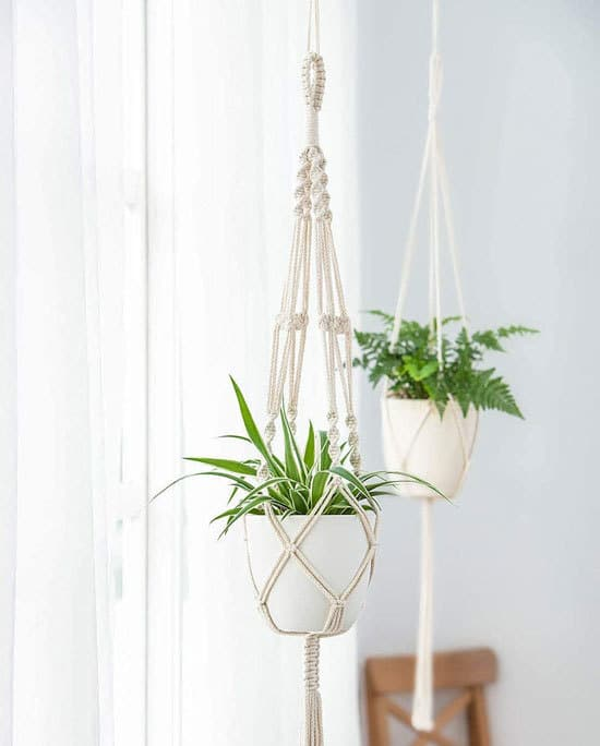 Best Planters Hanger