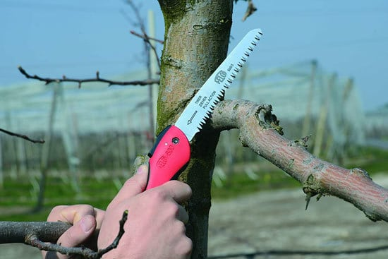 Best Pruning Saw Felco 600 Folding Pruning Saw