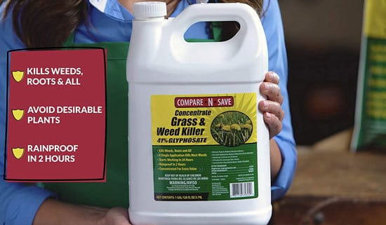 Best Weed Killer That Doesnt Kill Grass Compare N Save Weed Killer