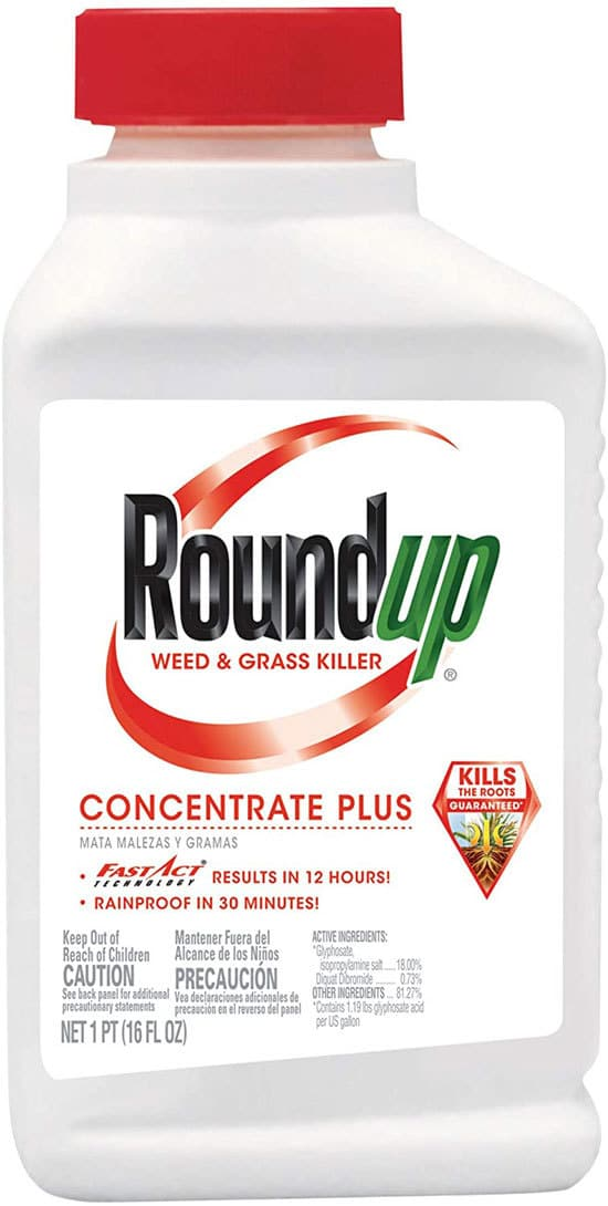 Best Weed Killer That Doesnt Kill Grass Roundup Weed Grass Killer Concentrate Plus