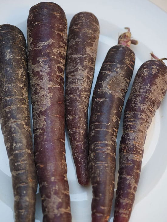 Black Vegetables For Your Garden Black Nebula Carrot