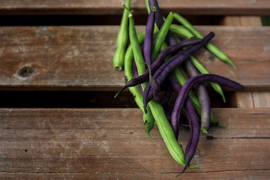 Black Vegetables For Your Garden Purple TeePee French Beans