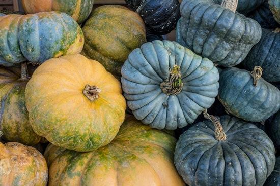 Black Vegetables For Your Garden Thai Kang Kob Pumpkin