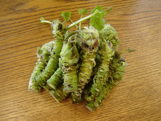 Cruciferous Vegetables Wasabi
