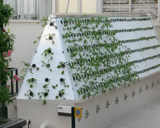 How To Build A High Pressure Aeroponics System
