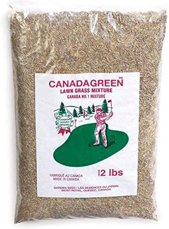 Does Grass Seed Go Bad Canada Green Grass Lawn Seed