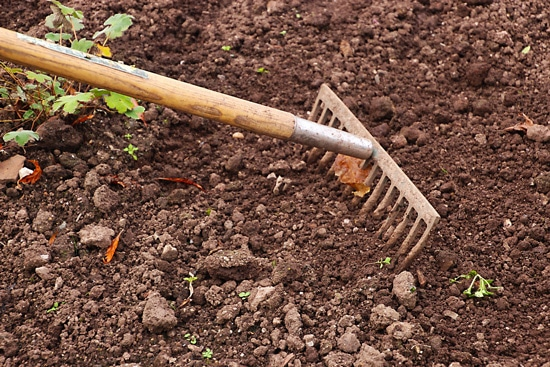 What Is The Difference Between Soil And Dirt