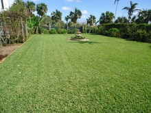 How to Make Bermuda Grass Thicker 2