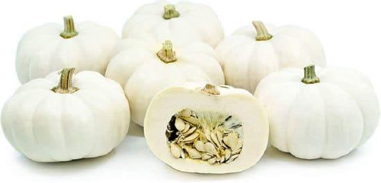 Casperita Small Pumpkin Varieties You Can Easily Grow