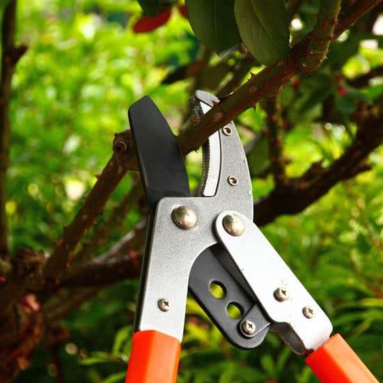 T MAI Aluminium Lightweight Handle Sturdy Tree Pruner Best Tree Pruner 2