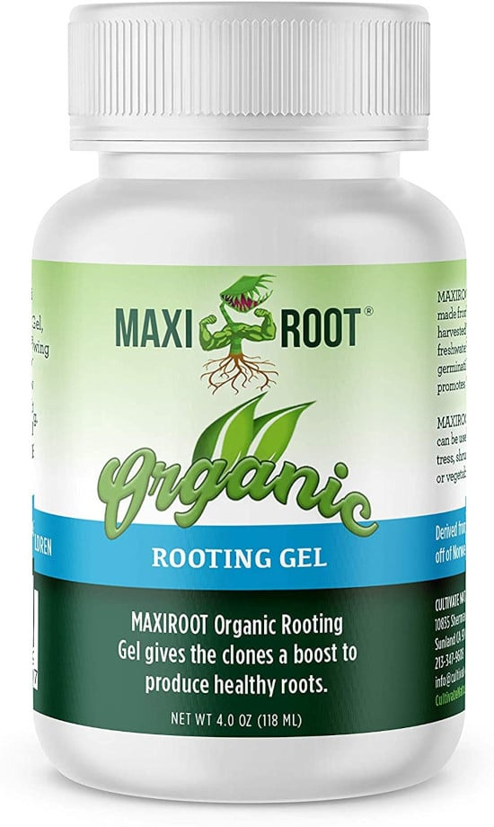 MAXIROOT Organic Rooting Envirocann Hormone Best Rooting Hormone