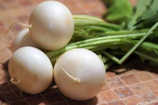 Radish and Turnip Small Vegetable Plants 2