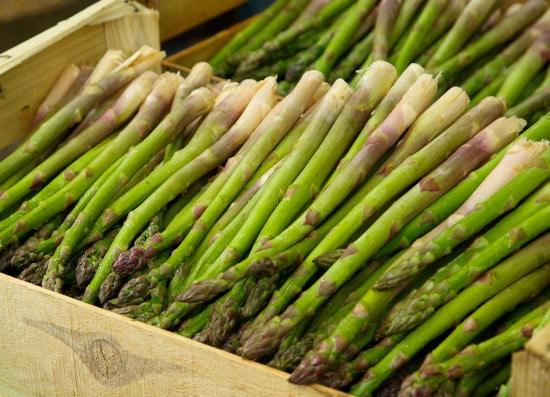 Asparagus Tall Vegetable Plants