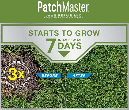 Scotts PatchMaster Grass Seed All In One for Sandy Soil Best Grass Seed for Sandy Soil 2