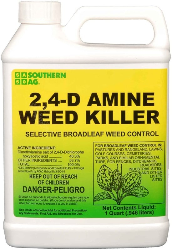 Apply 24 D Amine How To Get Rid Of Onion Grass