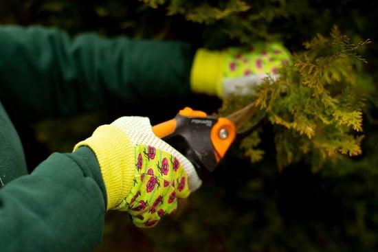 G F Products 1852 3 Women Soft Jersey Garden Gloves Women Work Gloves How To Prune Bougainvillea