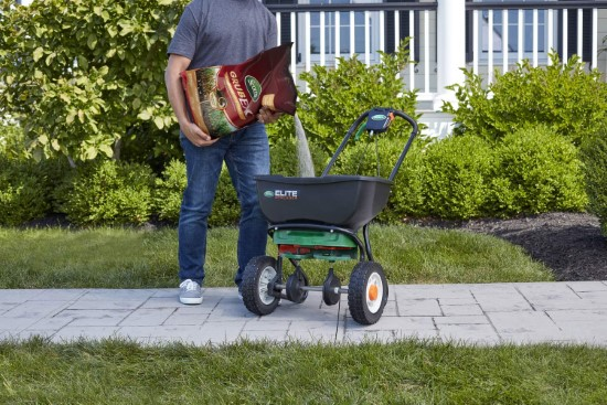 Scotts GrubEx How To Revive St. Augustine Grass