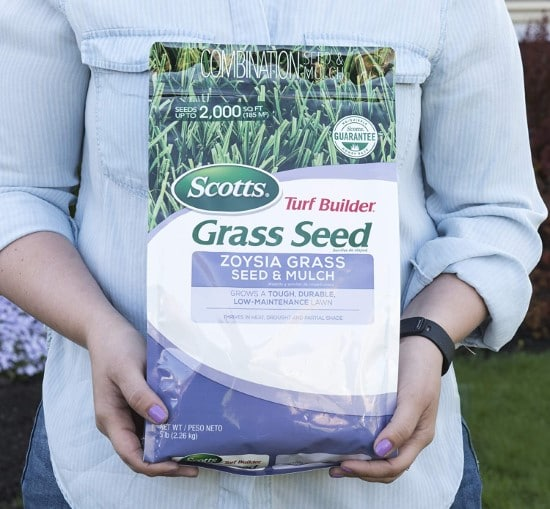 Scotts Turf Builder Grass Seed Zoysia Grass Seed and Mulch How To Grow Grass In Sandy Soil