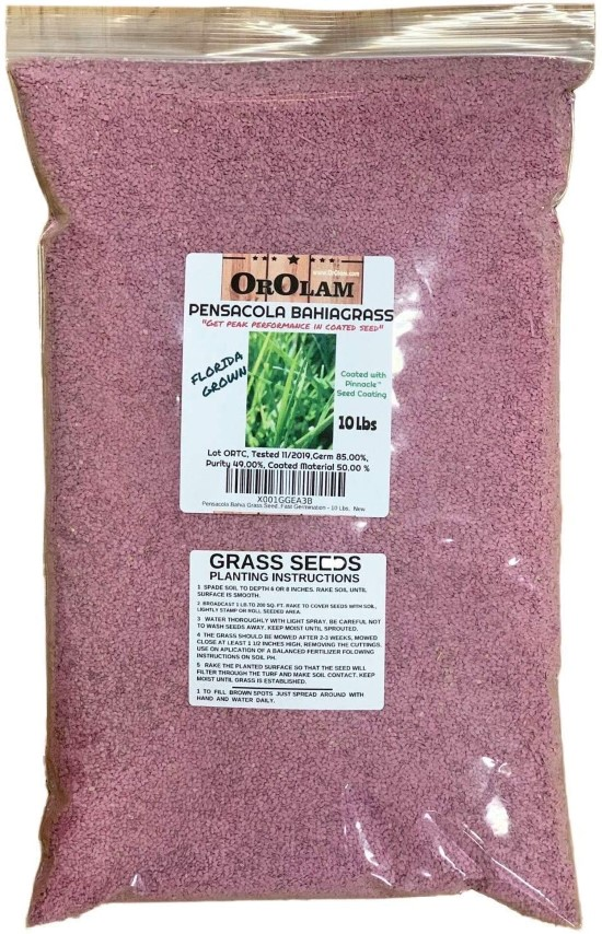SeedRanch Pensacola 10 Lbs Bahia Grass Seed Best Grass Seed for Florida