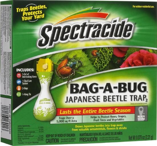 Spectracide Box Elder Bug Killer 10 Easy Ways On How To Get Rid Of Boxelder Bugs