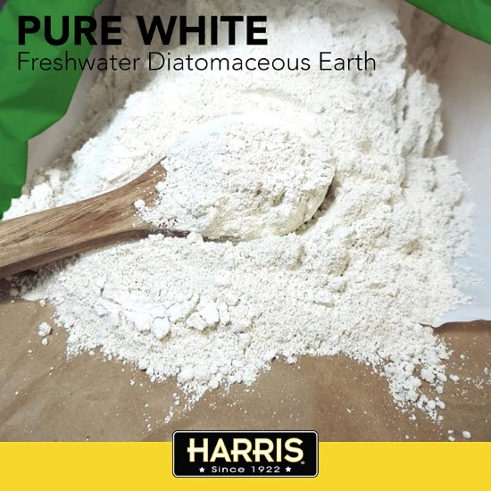Spread diatomaceous earth How To Get Rid Of June Bugs That Invade Your Garden