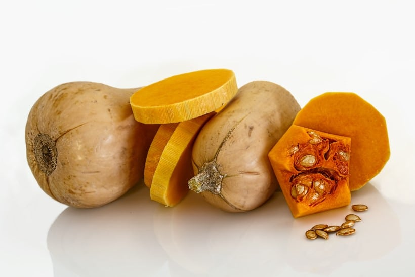 Are All Squashes Edible 5