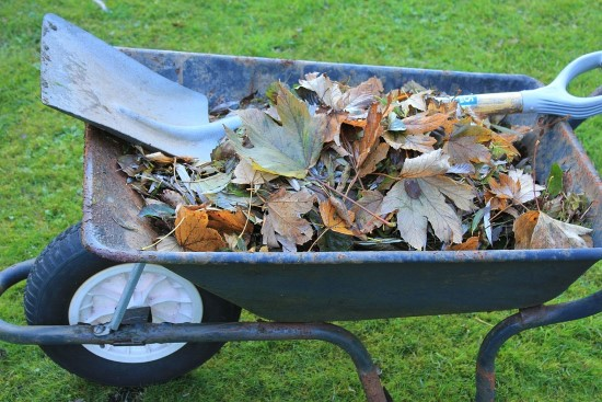 Biodegradable mulches What Is Mulch Used For
