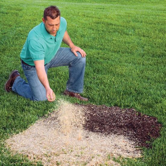 EZ Straw 2.5 CU FT Bale Seeding Mulch Biodegradable For Garden Best Mulch for Garden 2