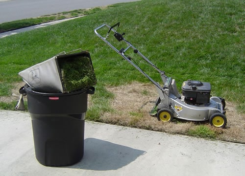 Grass Clippings What Does Mulching Grass Do