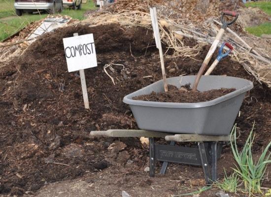 Organic Mulch Is Mulch Good For Gardens